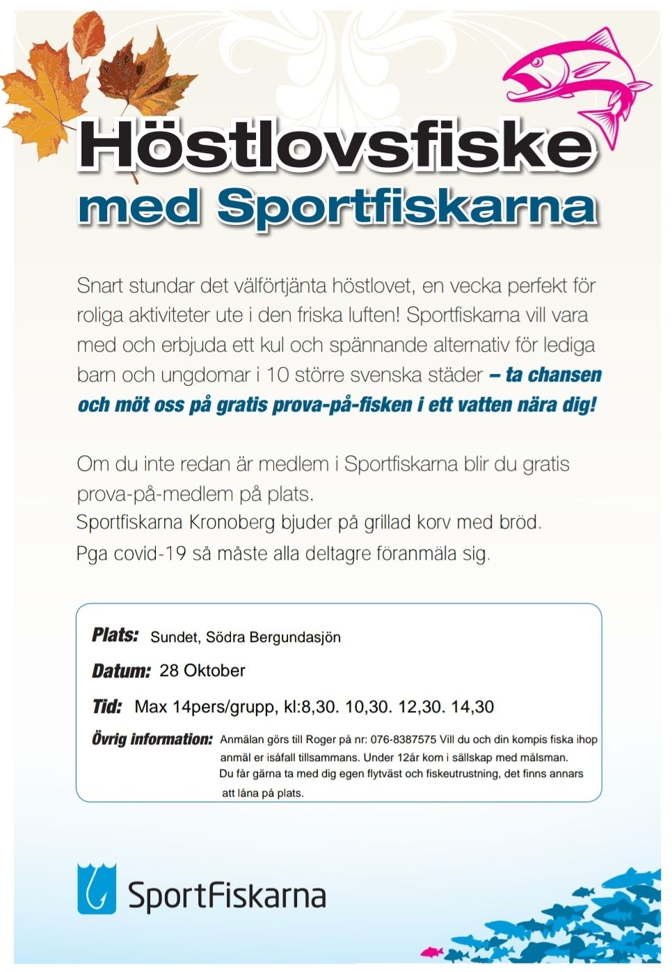 2012 11 pimpelsport.se